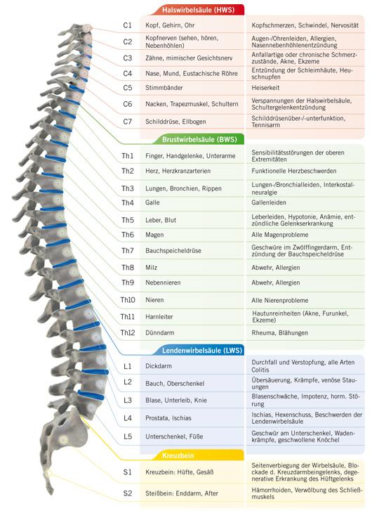 diskusprolaps l5 s1 symptome